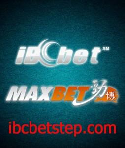 ibcmaxbet